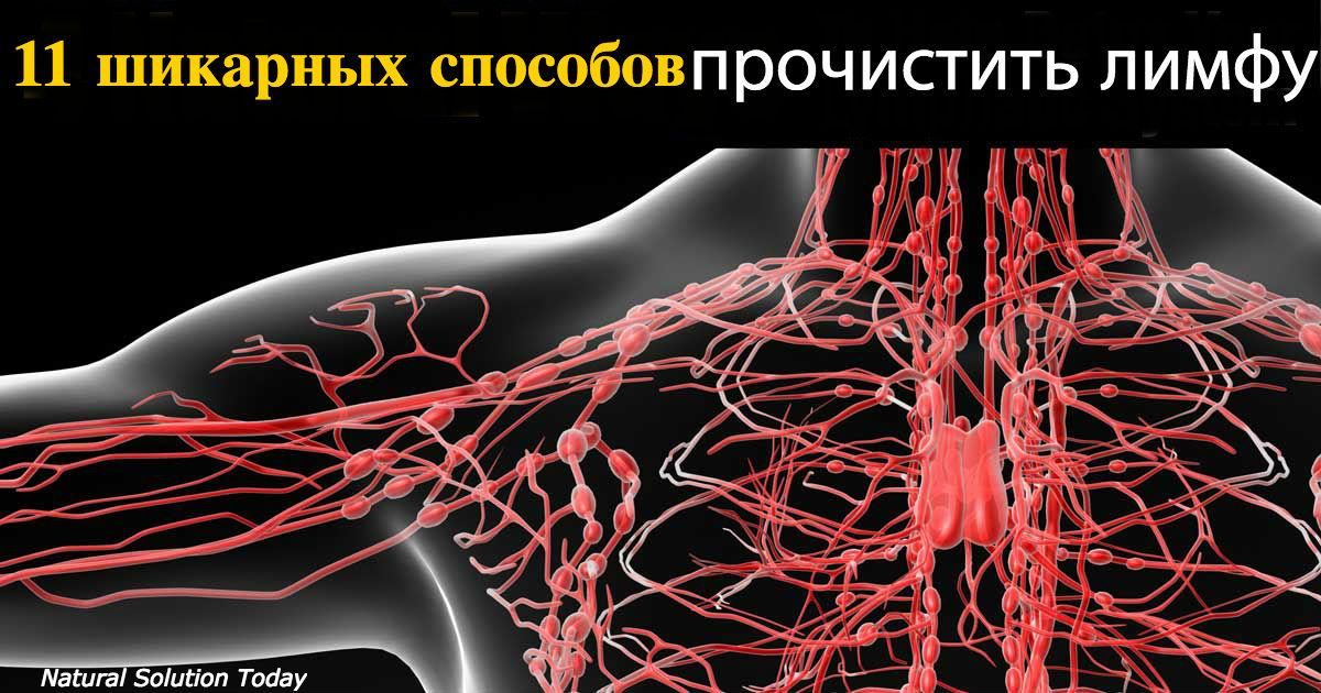 Вот 16 главных признаков застоя в лимфатической системе! Сколько у вас?