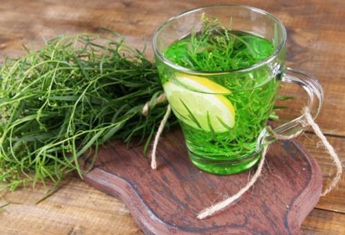 Трава тархун - лечебные свойства и противопоказания