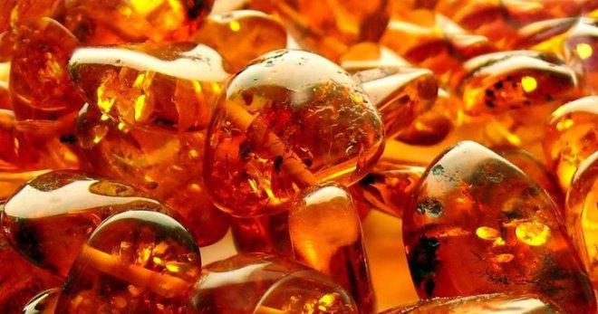 Сила янтаря: как работает янтарная кислота и в чём её польза