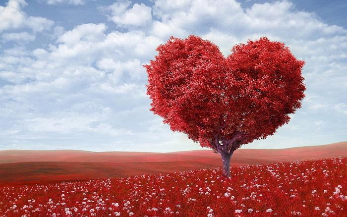 Сердечная недостаточность: факторы риска