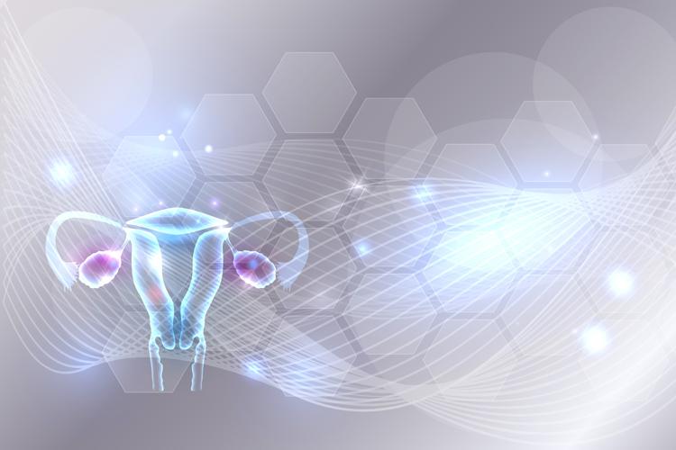Гиперплазия эндометрия и полипы матки: что значит, как перестать бояться и избавиться