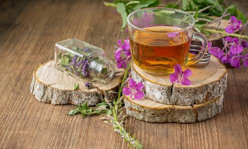 Иван-чай исцеляет от многих недугов - полезные свойства копорского чая