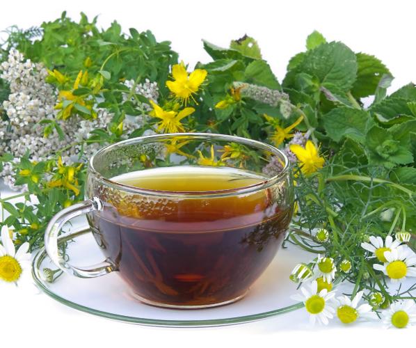 Мочегонные травы: пить или не пить?