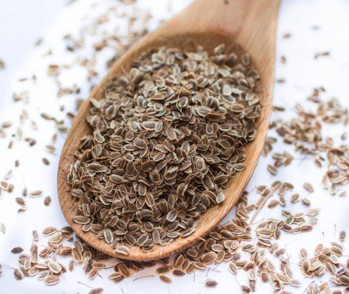 Чем полезны семена укропа для здоровья, и как их применять