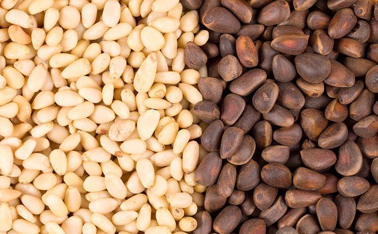 Чем полезны кедровые орехи для организма женщин и мужчин?