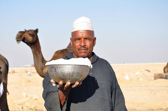 Кумыс - живительный напиток из кобыльего молока