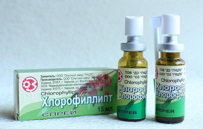 Спасительное средство: хлорофиллипт для полоскания горла