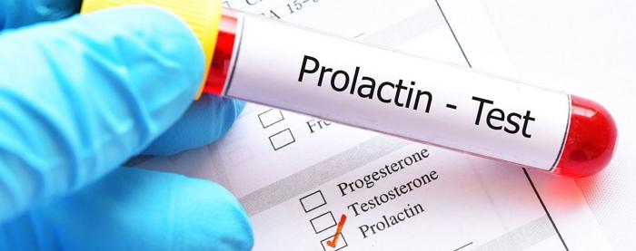 Пролактин: что это за гормон