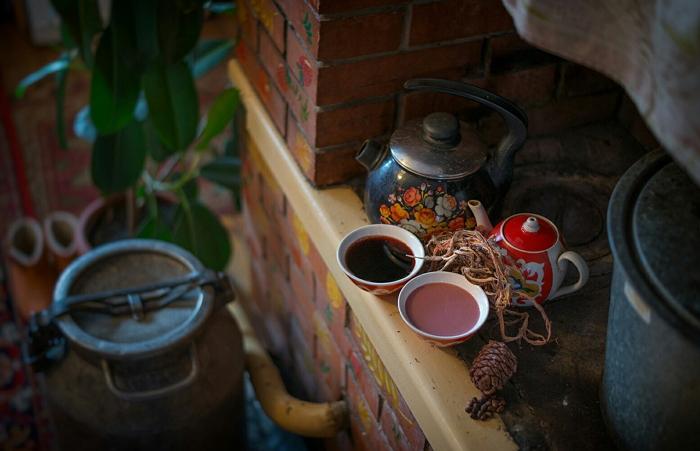 Лечебные свойства красного корня (копеечника чайного) для здоровья человека, противопоказания и области использования