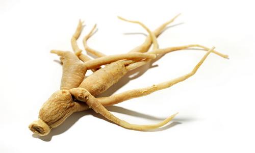 Не всем полезные: свойства корня женьшеня, его влияние на организм человека и противопоказания