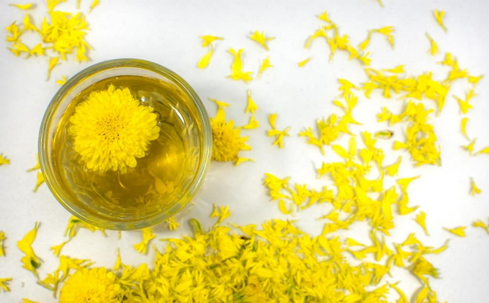 Хризантема - лечебные свойства, рецепты народной медицины