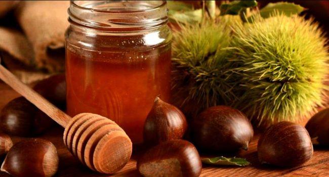 Каштановый мёд - польза и вред, как принимать для здоровья