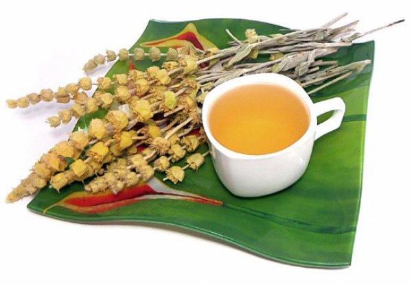 Татар-чай - чем полезен напиток из железницы, как правильно заваривать
