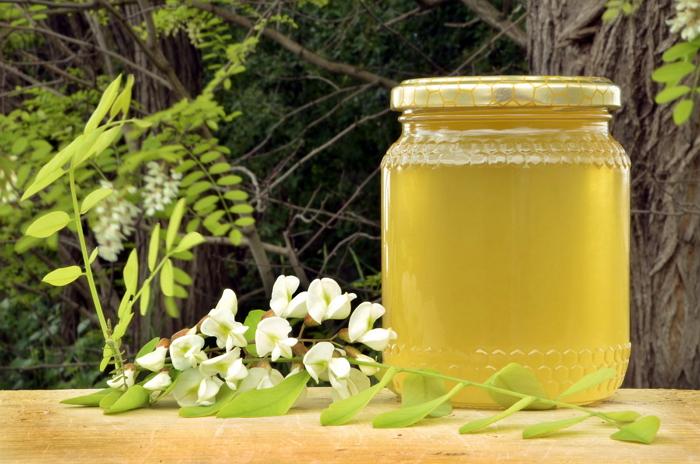 Акациевый мед - лечебные свойства и особенности, состав