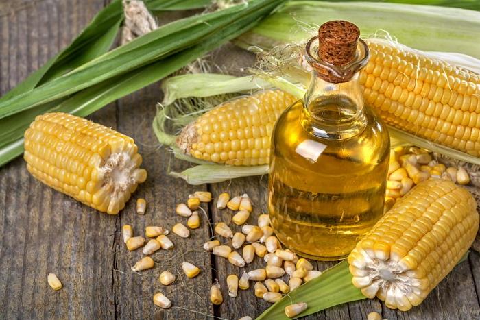 Кукурузное масло - лечебные свойства, сферы применения