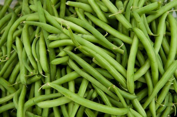 Бобовые стручки - лечебные свойства рядового продукта